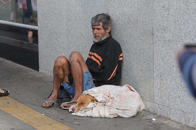 morador de rua tira seu cobertor e cobre cachorro