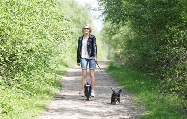 levando-o-cachorro-para-passear-airwheel