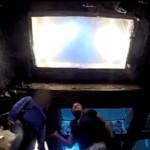 pegadinha-tubarao-no-aquario