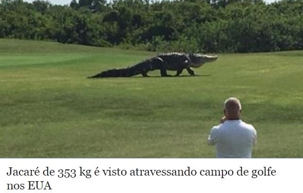 ...Notícias... - Página 22 Ainda-bem-que-golf-%C3%A9-esporte-de-rico