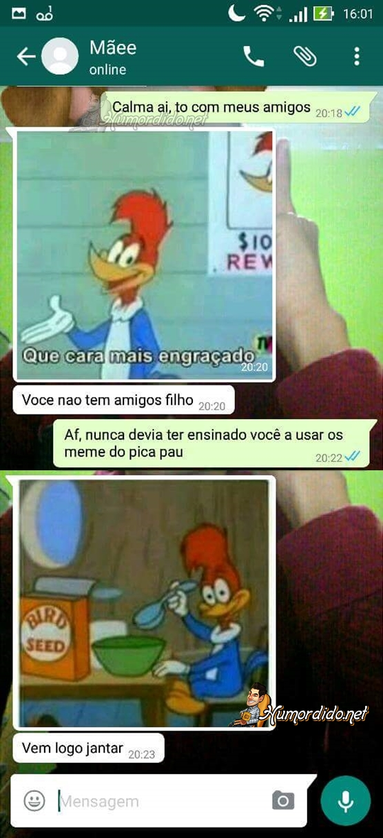 mae-usando-memes-do-pica-pau