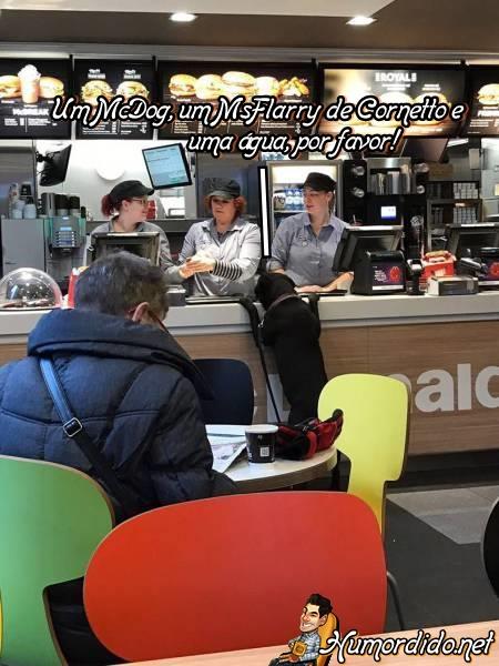 cachorro-fazendo-pedido-no-mcdonalds